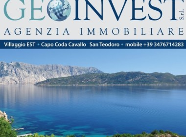 Geoinvest